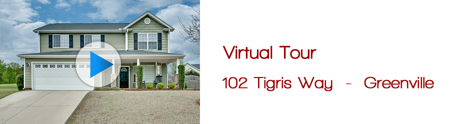 dp-vt-102 tigris way